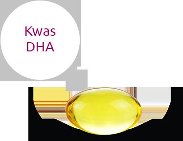 Kwas DHA